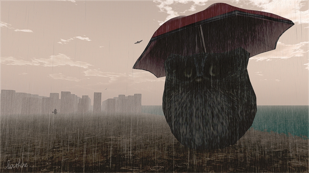 Rain 2304 2 022613