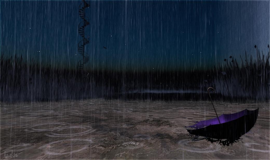 Rain 2304 3 022613