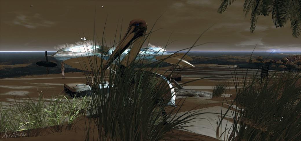 Cortina Beach 3 10.26