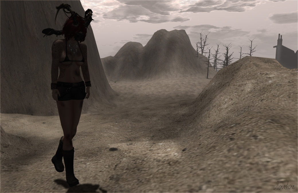 Masked in Wastelands 101413 tentative dm pose