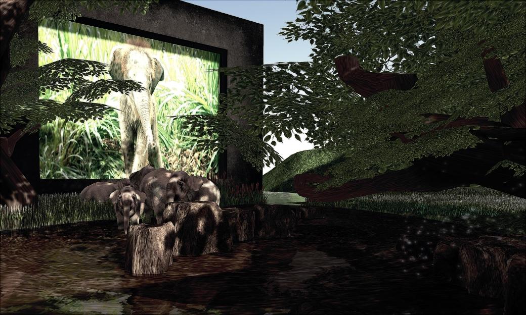 blog 122813 elephant_008