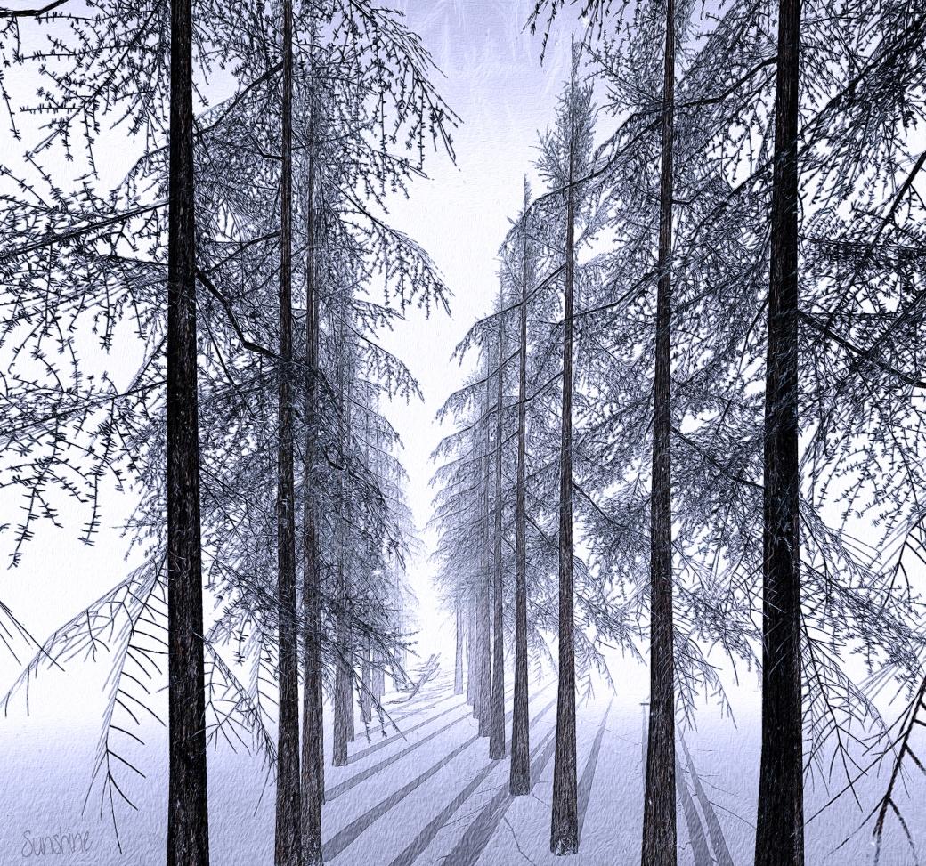 furillen trees 012616