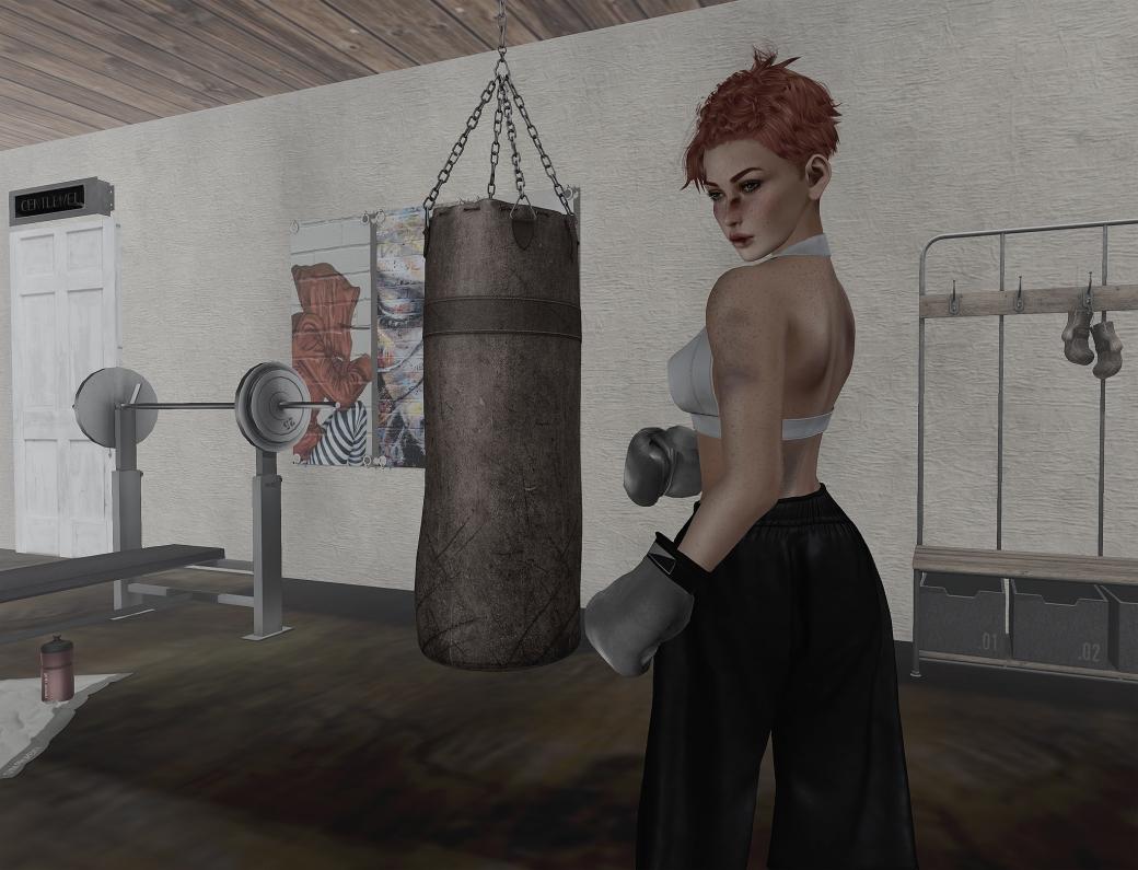 061616 blog ROQUAI Boxer a