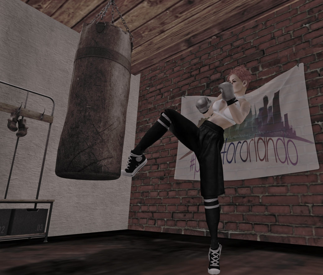 061616 blog ROQUAI Boxer b