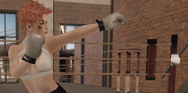 061616 blog ROQUAI Boxer c