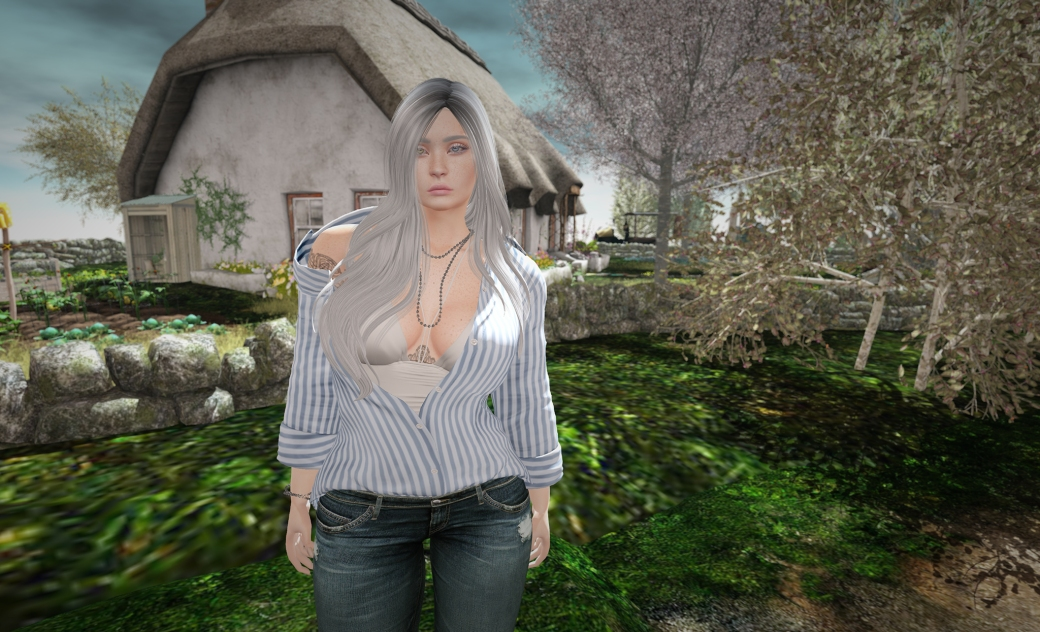 Blog 11.19.17 secondlifechallenge